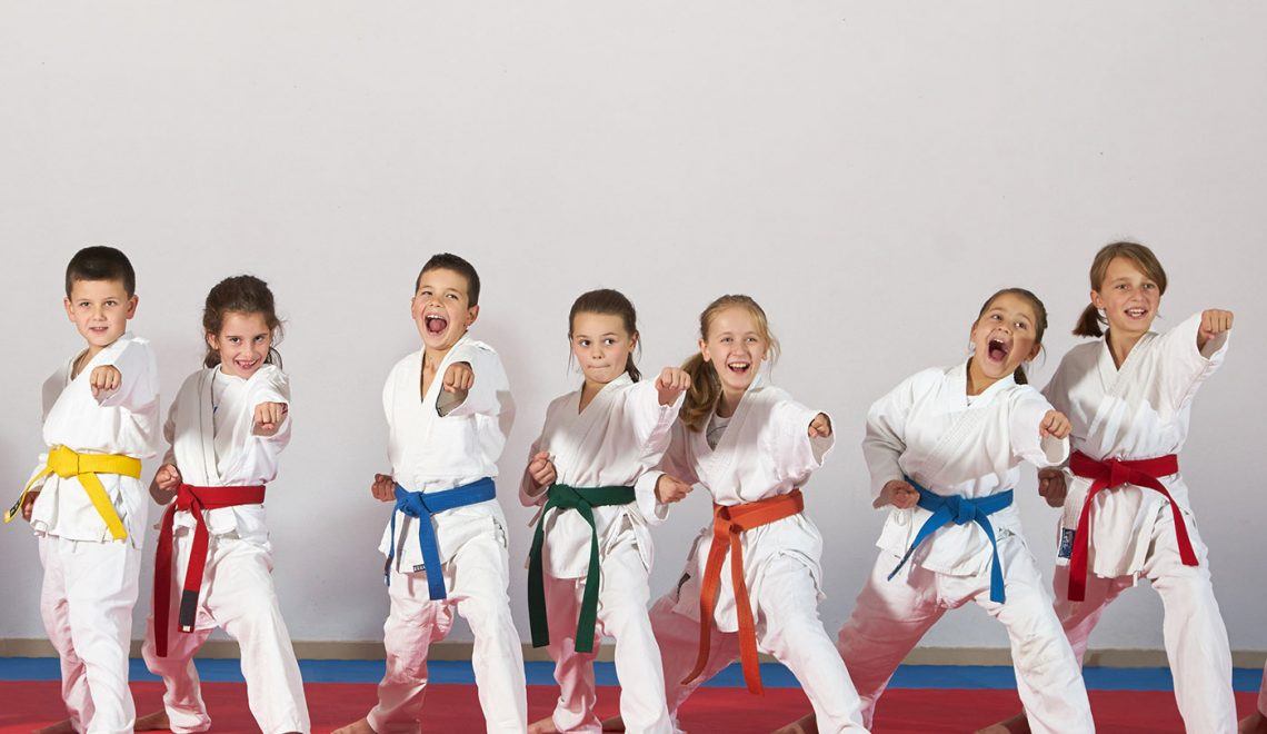 Martial-arts-the-perfect-answer-to-a-lack-of-physical-education