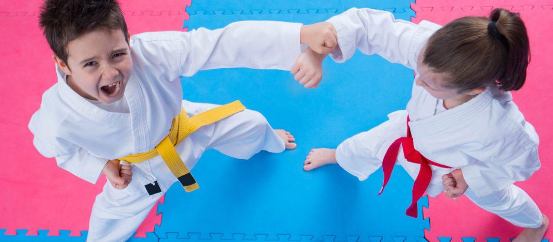 taekwondo kids self defense